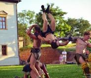 Lupte de gladiatori